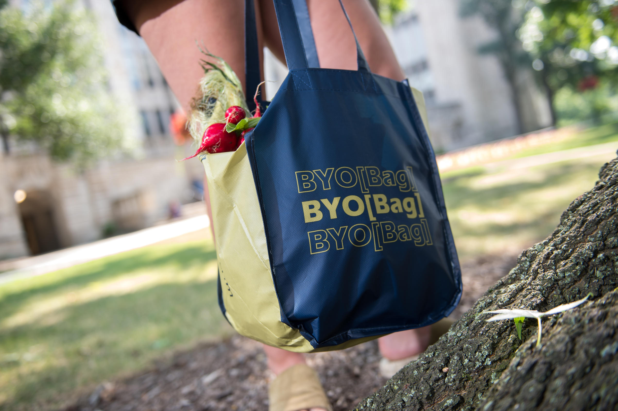 First Year Sustainability Bags (Fall 2019)