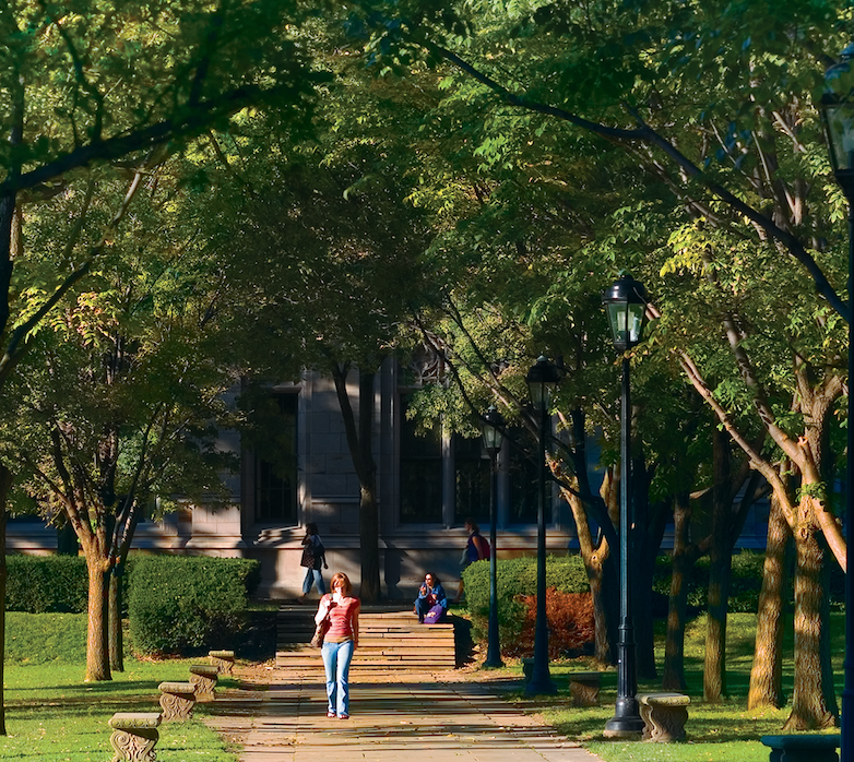 Trees' Benefit to You, Campus, & Our Communities