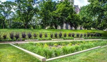 Report – Green Infrastructure for Stormwater Management: Knowledge Gaps and Approaches