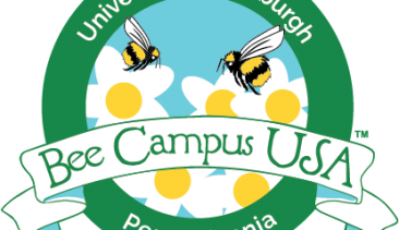 Bee Campus USA Certification for Pitt